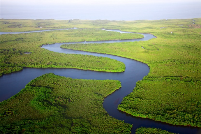 Río Gambia (Dan Roizer Unsplash)