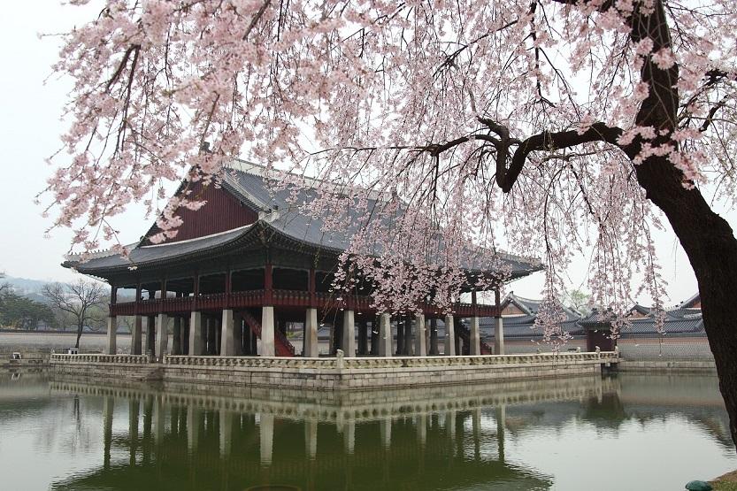 parque en Seúl